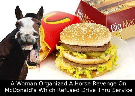 horse_burgers-416639