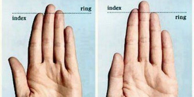 Differences In Finger Length Have Been Repeatedly Linked To A Range Of Human Traits From Aggression To Musical Ability Facts Wt