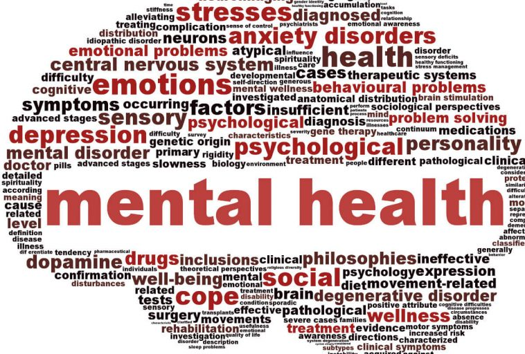 Image result for mental health issues